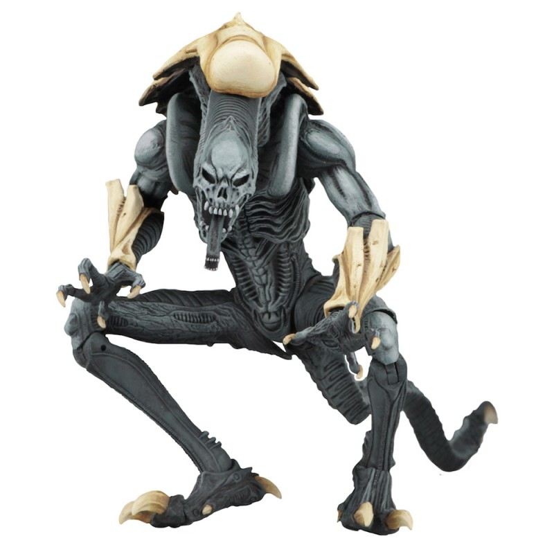 NECA Alien vs Predator Arcade Appearance Chrysalis Arachnoid Razor Claws Alien Set